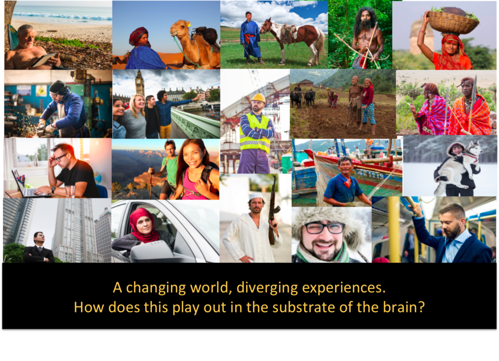Introducing the Human Brain Diversity Project
